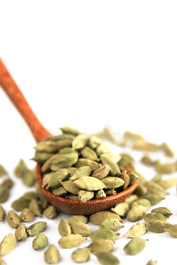Cardamom royalty free stock photography