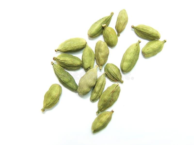 Cardamom. Green cardamom pods on a white background stock photos