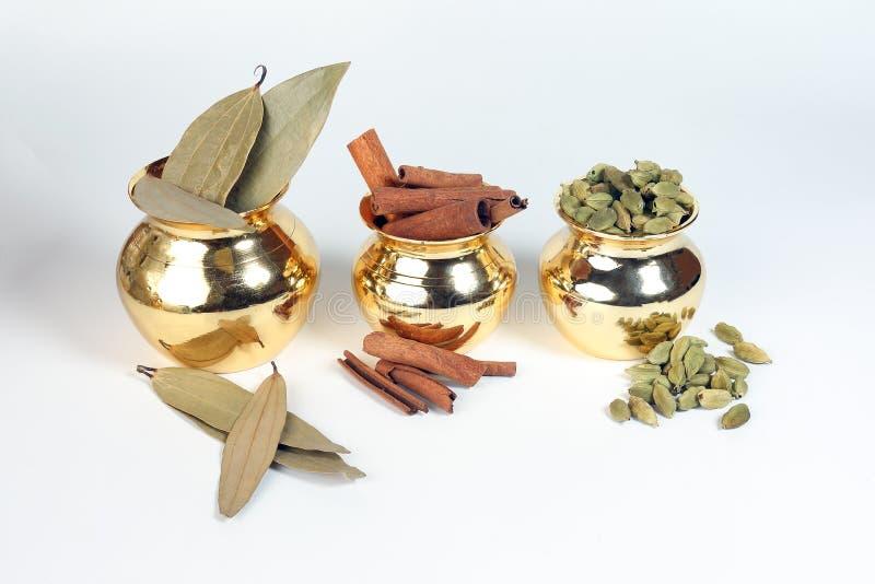 Cardamom cinnamon bay leaf spice in shiny metal po stock images