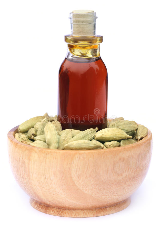 Cardamom with oil. Over white background stock image