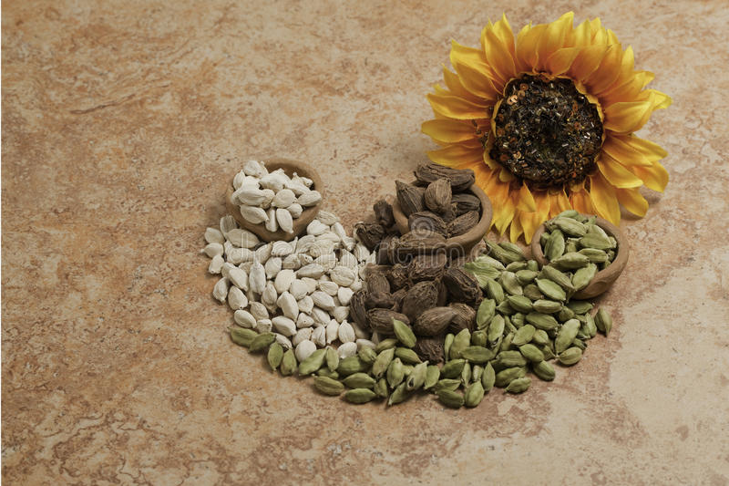 Cardamom Seeds. Green, black and white with a sunflower on brown tile stock image