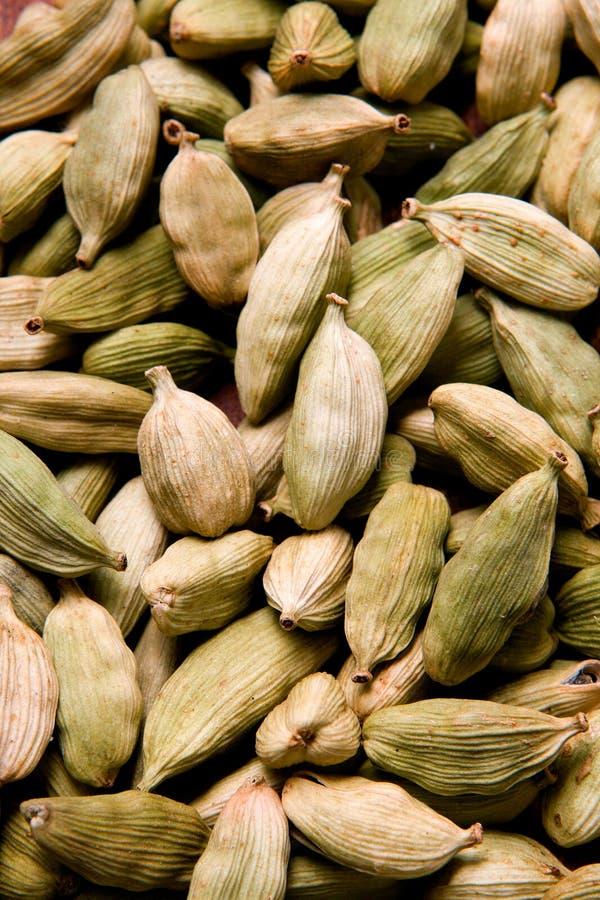 The cardamom seeds stock image