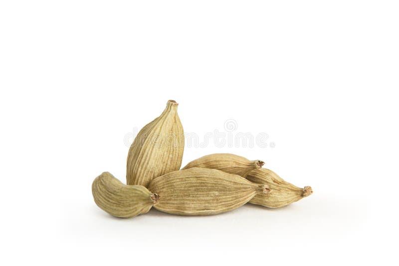 Cardamom. Seeds isolated on white background stock image