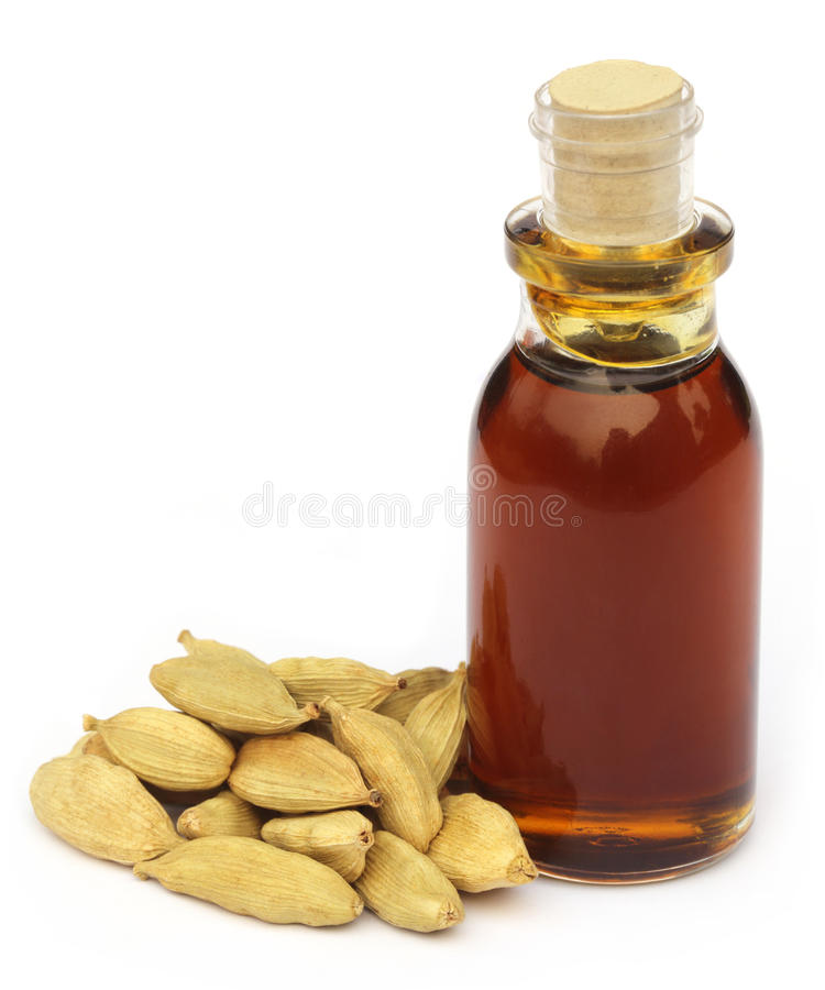 Cardamom seeds with oil. Over white background royalty free stock photo