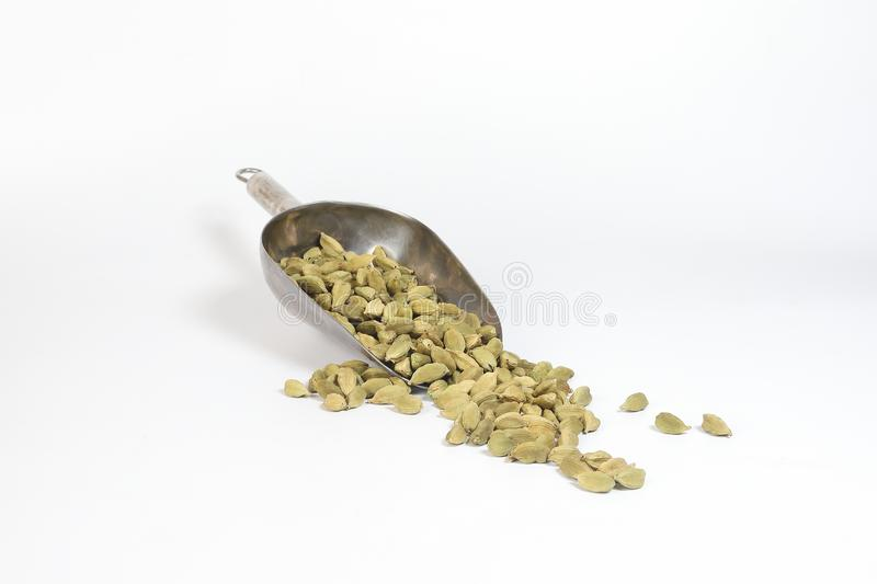 Cardamom spice in metal scup ice shovel royalty free stock photography