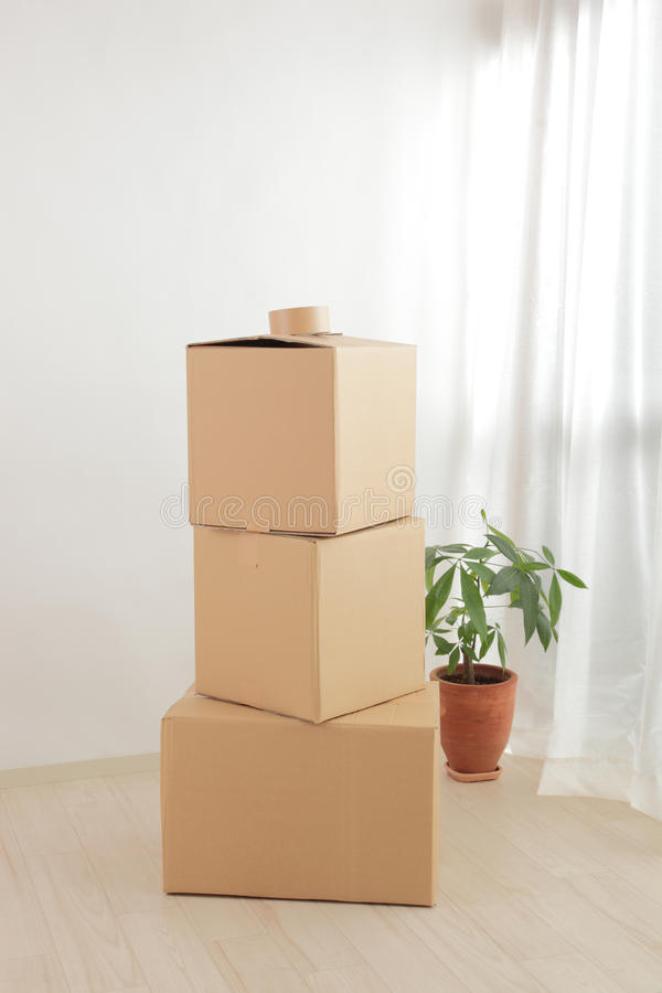 Download Cardboard stock image. Image of plant, package, plants - 22841933