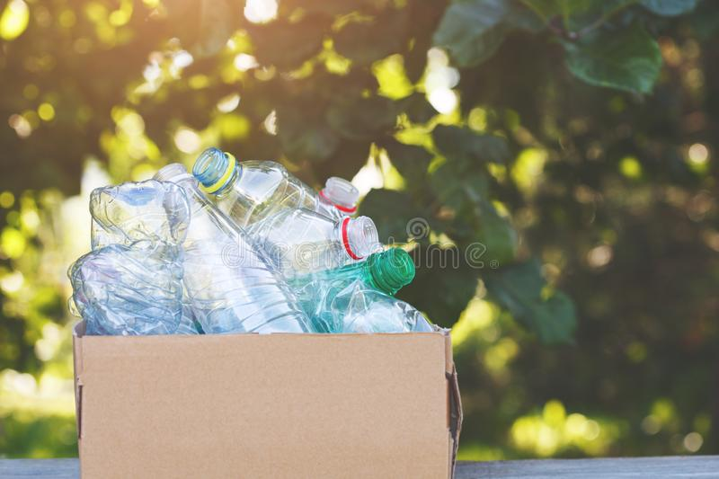 Cardboard box of plastic bottles ready for recycling. Copy space royalty free stock photos