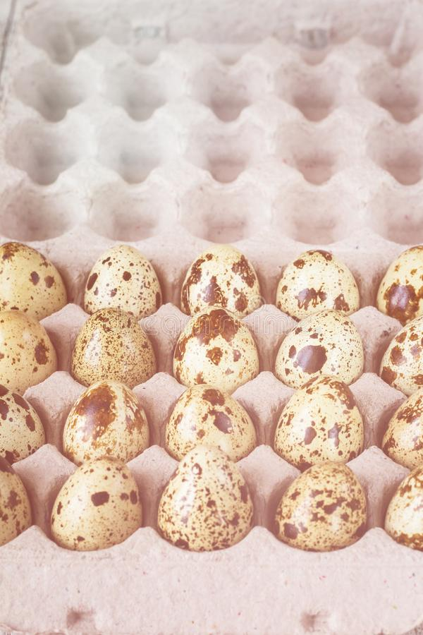 Cardboard egg rack wit quail eggs on white wooden table royalty free stock photo