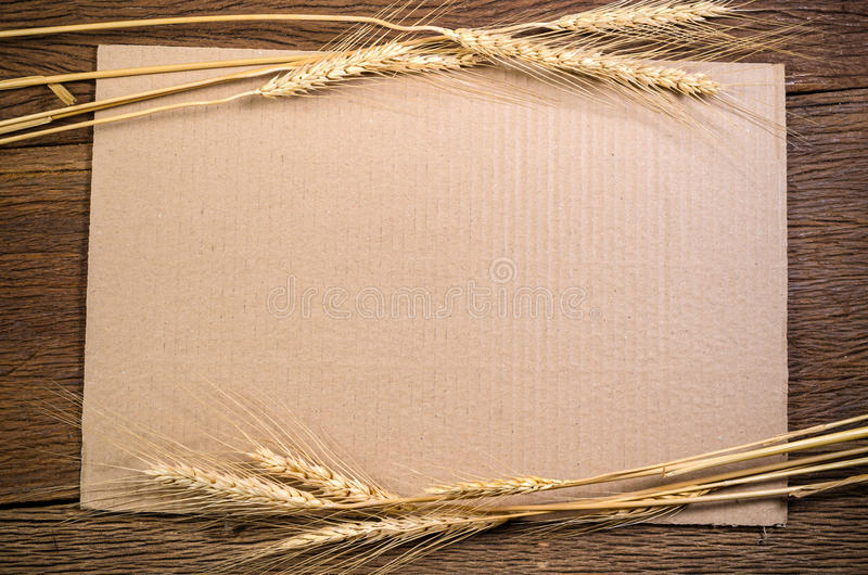 Cardboard paper with barley grain on wooden table royalty free stock photography
