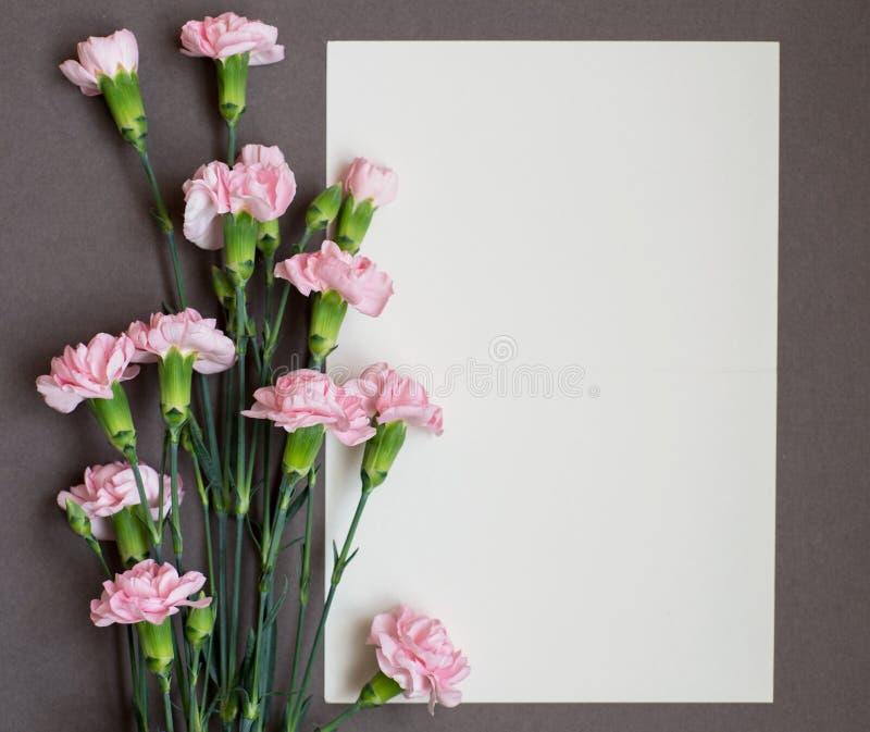 Carde com o cravo das flores frescas imagem de stock