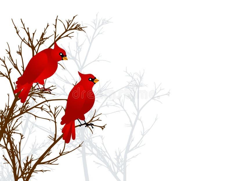 Cardeais vermelhos que sentam-se na árvore