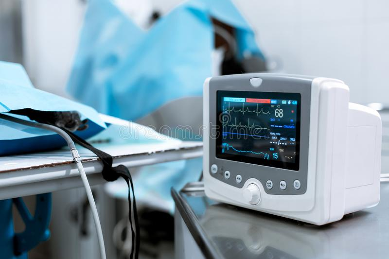 Cardiac monitor at operating table with dog on background. Pet surgery stock image