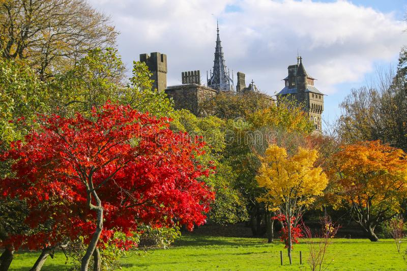 Cardiff slottyttersida i mitten av Cardiff i höstsolskenet royaltyfria bilder