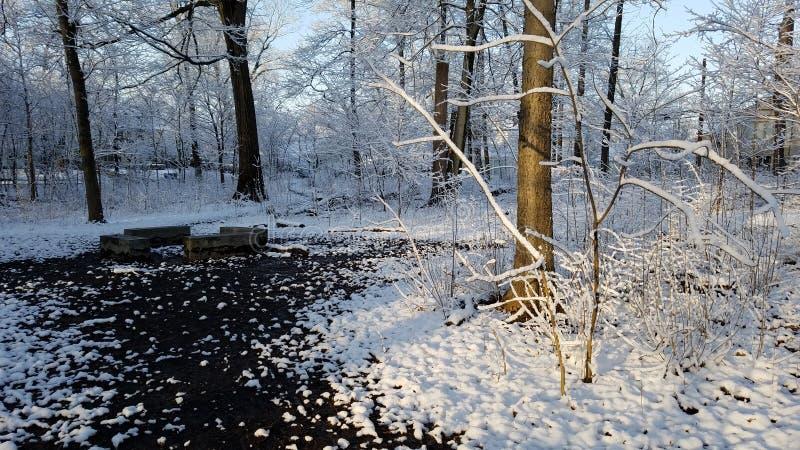 Cardiff Woods Park stock photo