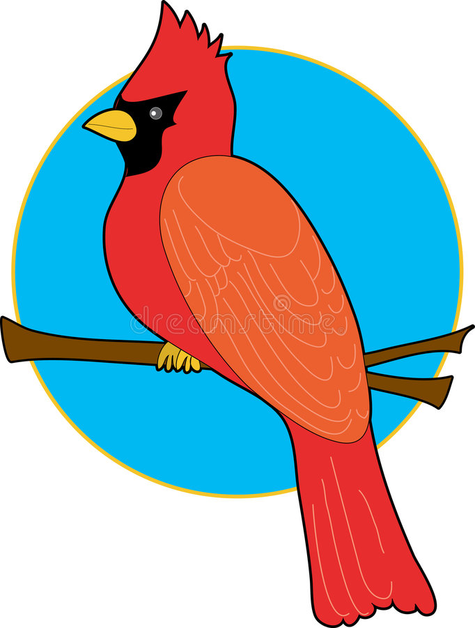 Cardinal. Red Carninal sitting on a branch with a blue background vector illustration