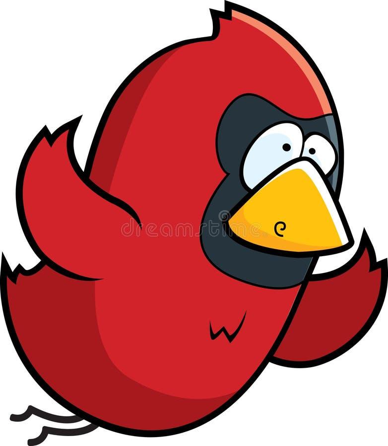 Cardinal bird vector illustration