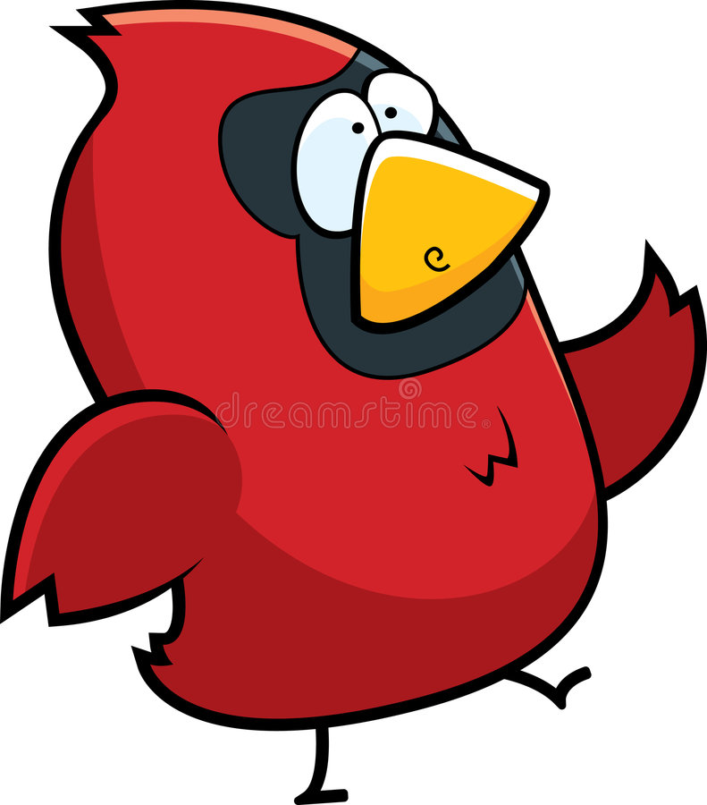 Free Cardinal Bird Royalty Free Stock Images - 8456049