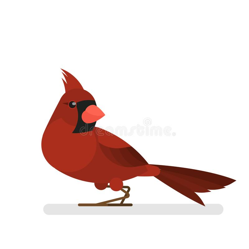Cardinal bird. Animal with red feather and beak. Wildlife. Isolated vector illustration in cartoon style vector illustration