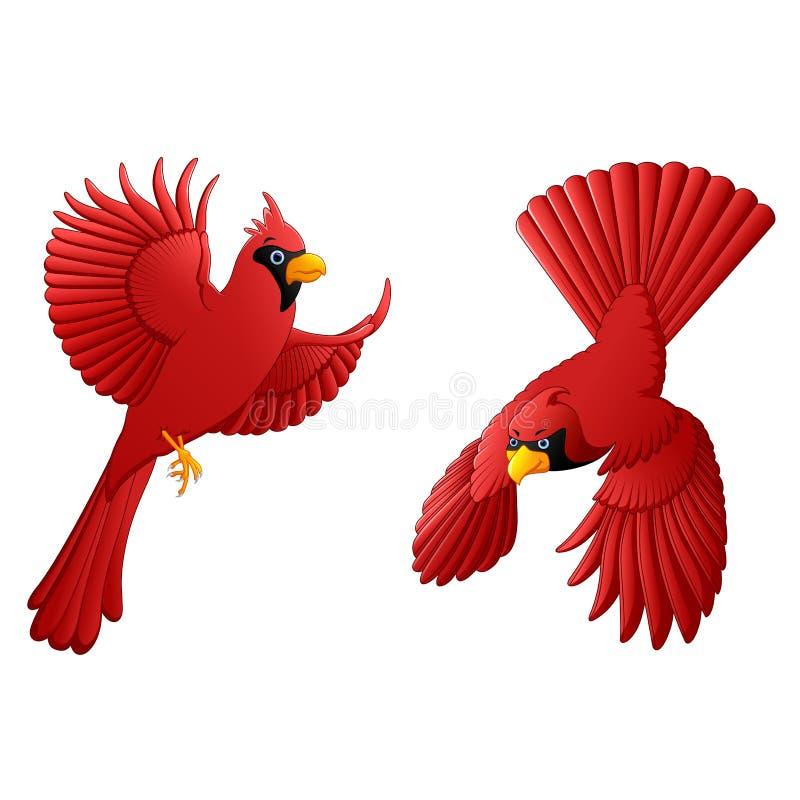 Cardinal cartoon set vector illustration