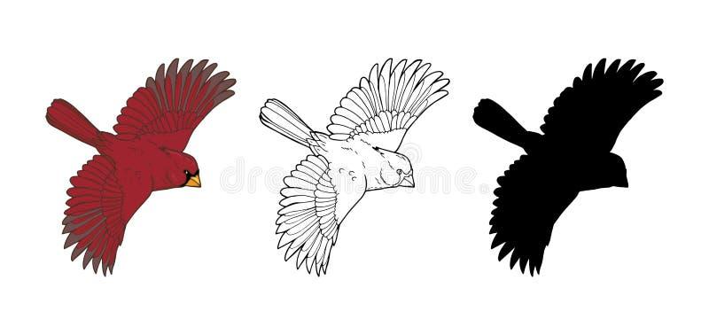 Cardinal du nord, un oiseau de la famille des pinsons illustration de vecteur