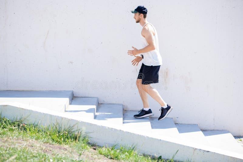 Cardio- exercício fotos de stock