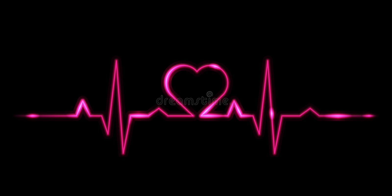 Cardiogram of love vector illustration