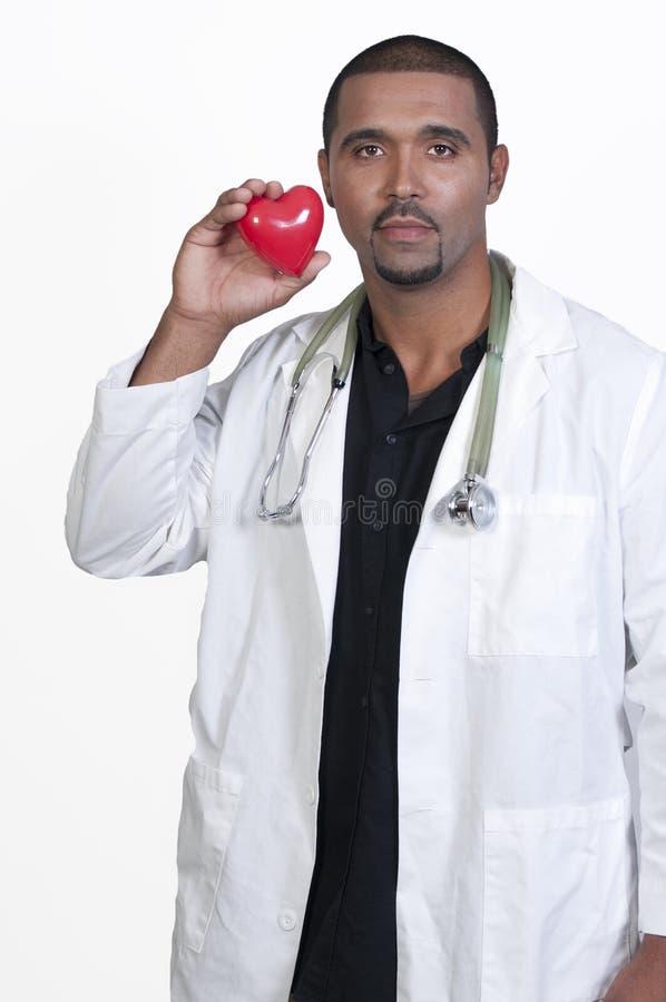 Cardiologist royaltyfria bilder
