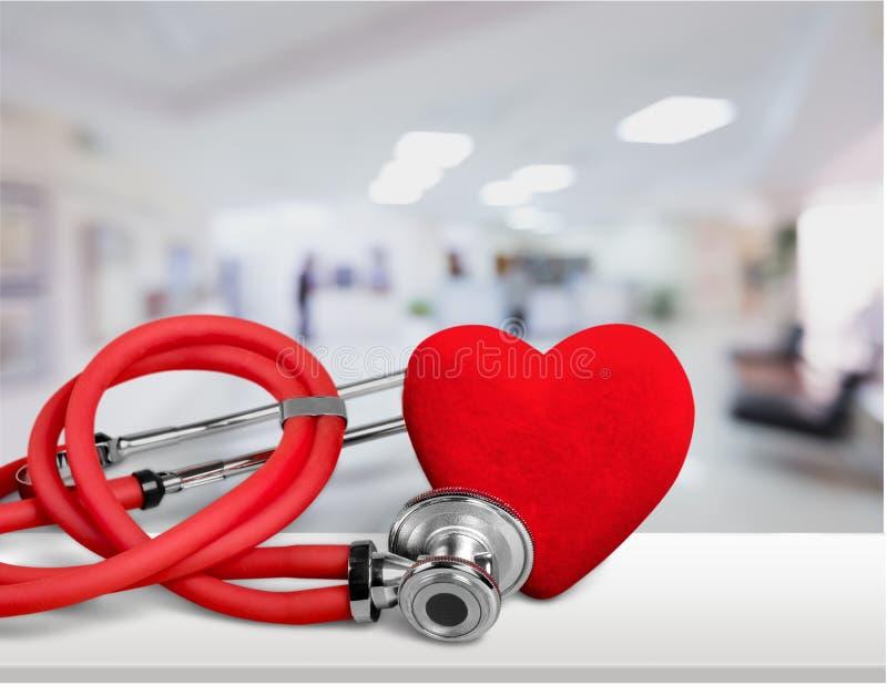 cardiologist royaltyfri foto