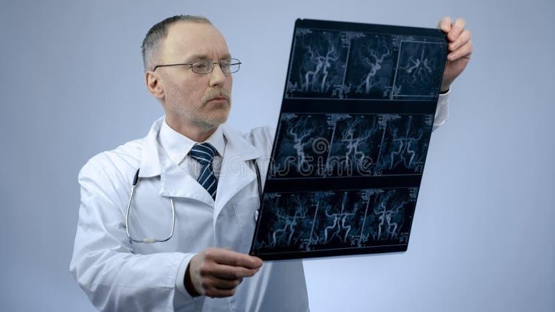 Cardiologista que verifica a varredura de vasos sanguíneos, doença cardíaca do CT, arritmia fotos de stock