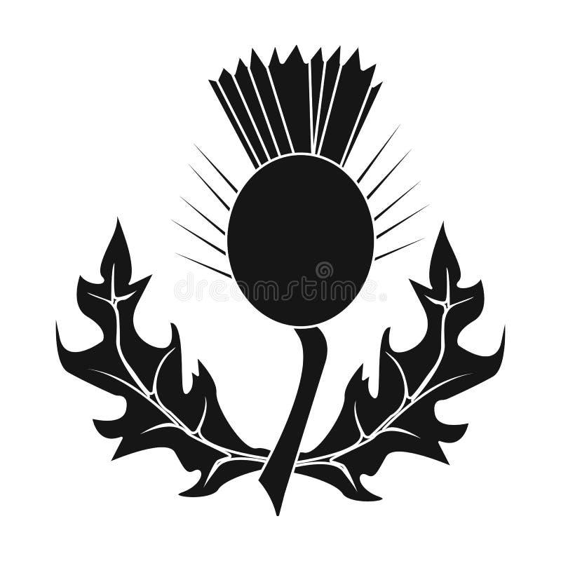 Cardos com folhas Planta medicinal de Escócia Único ícone de Escócia no estoque preto do símbolo do vetor do estilo ilustração do vetor
