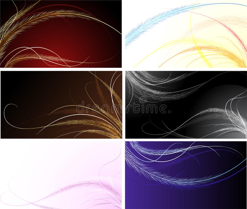 Download Cards with fine feathers stock vector. Image of delicate - 21589091