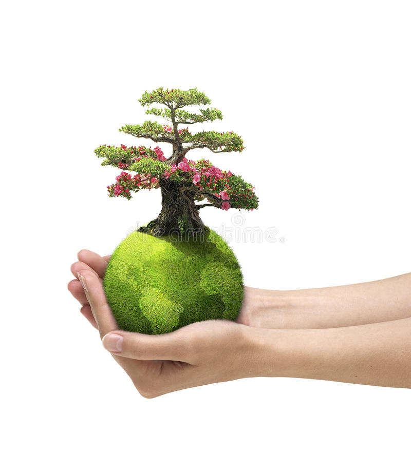 Download Care about nature stock illustration. Image of green - 10871995