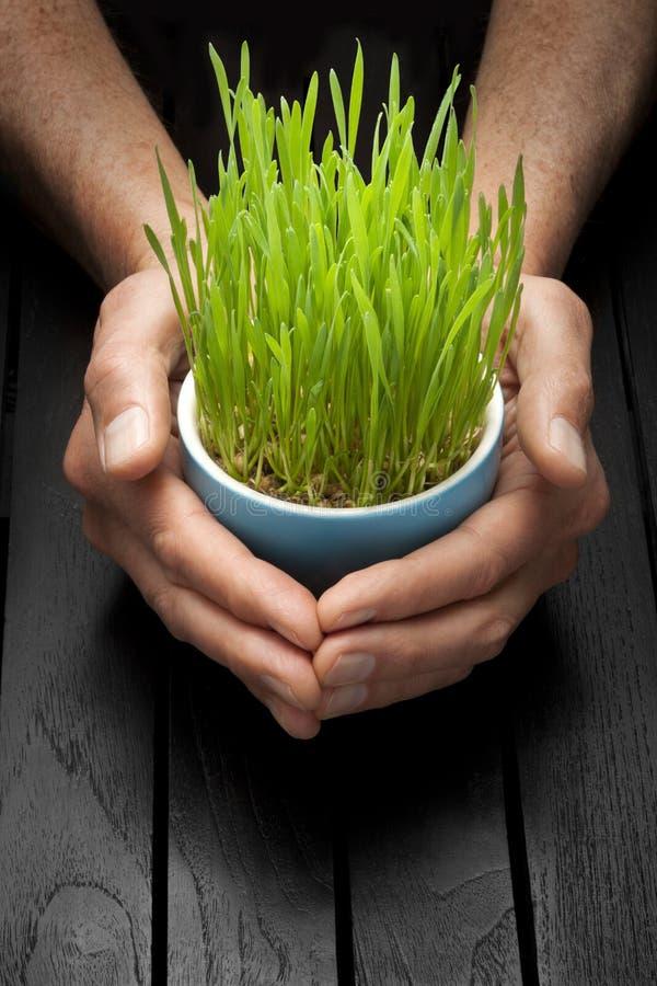 Life Sustainability Responsibility Management Business stock image