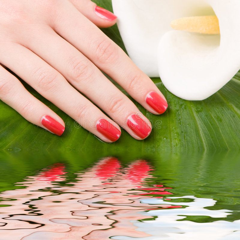 Care for woman hands stock photo