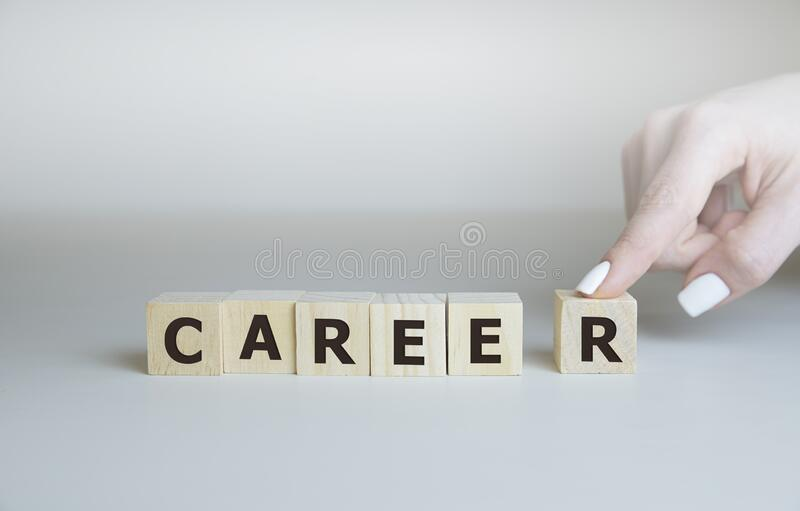 4 497 Career Guidance Photos Free Royalty Free Stock Photos From Dreamstime
