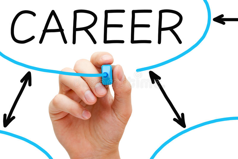 Career Flow Chart Blue Marker Stock Photography