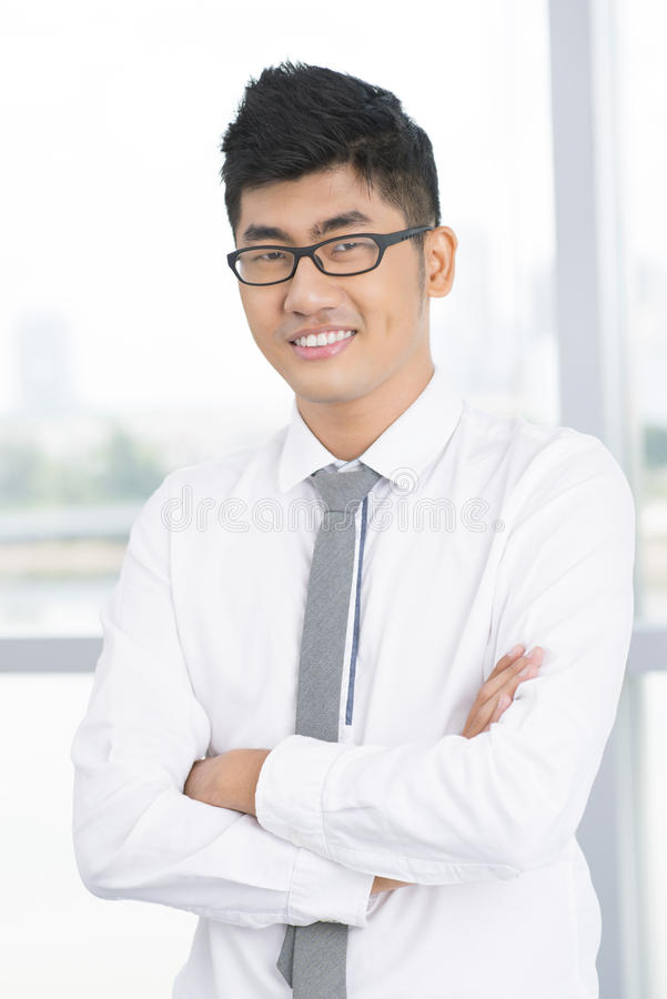 Download Careerist stock image. Image of confident, adult, ambitious - 27752385