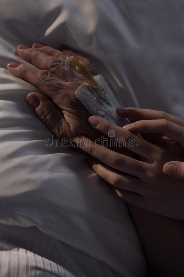 Caregiver holding elderly patient's hand. Close-up of caregiver holding elderly patient's hand in hospital stock image