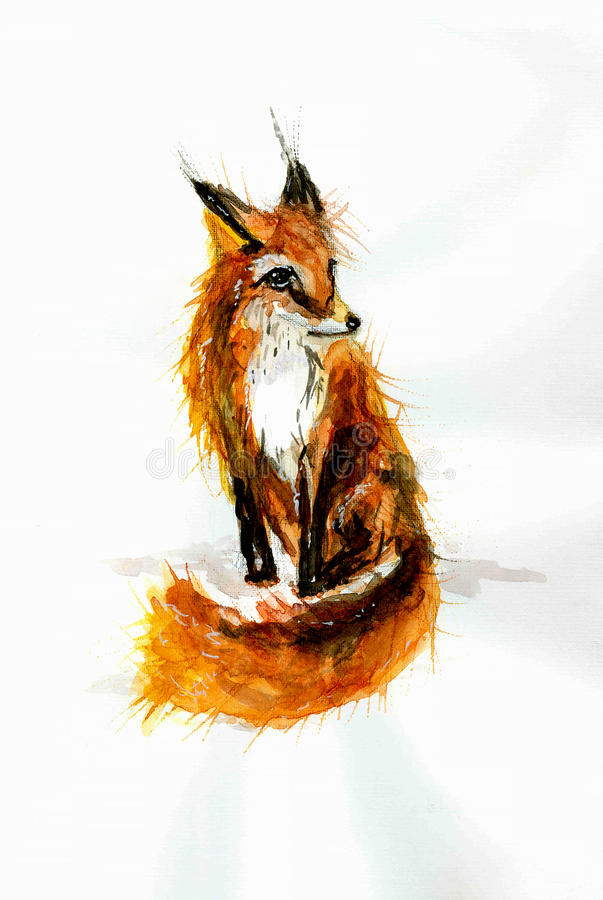 Careless watercolor drawing of red fox . royalty free stock image