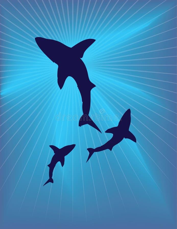 Download Caretta under the sea stock vector. Image of illustration - 8411123