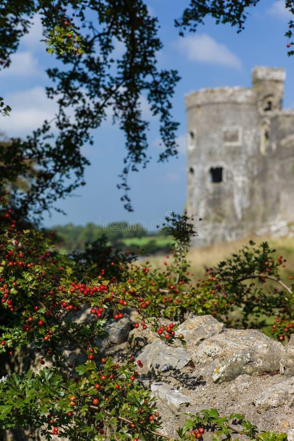 Carew middeleeuws kasteel royalty-vrije stock foto