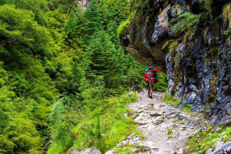 Carga levando do porteiro no trajeto trekking na área da conservação de Annapurna, Nepal imagens de stock