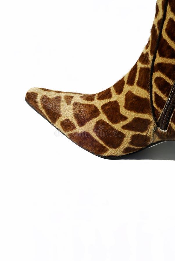 Cargador del programa inicial de la jirafa fotografía de archivo libre de regalías