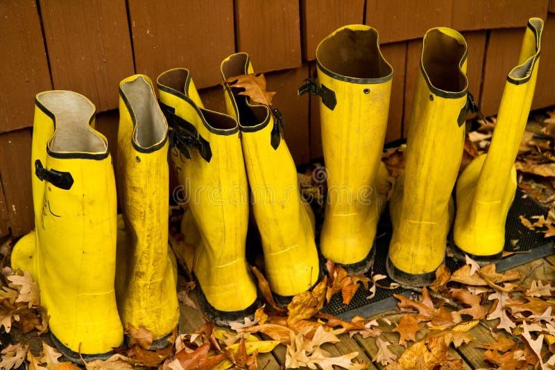 Cargadores del programa inicial de lluvia amarillos imagen de archivo