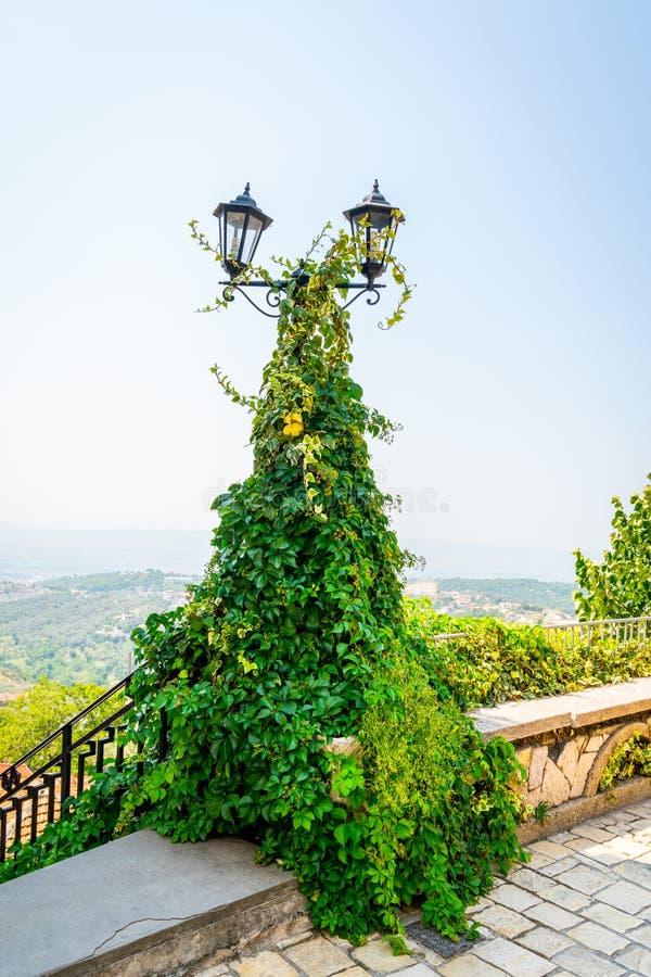 Cargo da lâmpada do vintage com as duas lanternas cobertas com a planta grossa da trepadeira do verde ivi Opinião cênico da paisa fotos de stock royalty free