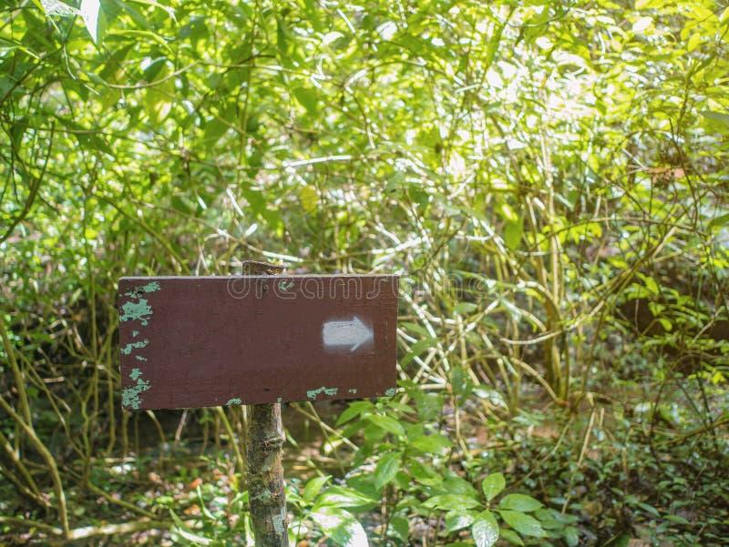 Cargo de madeira do guia na floresta imagens de stock royalty free