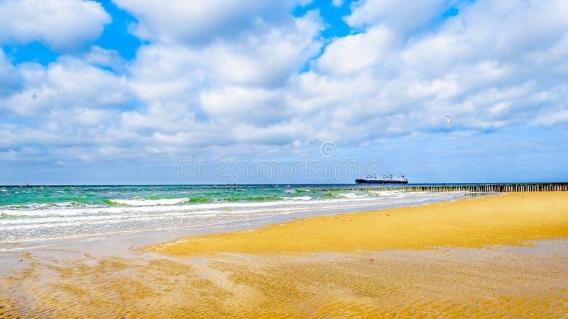 Carguero grande del océano que viene del Mar del Norte que dirige en el Westerschelde al puerto de Vlissingen fotos de archivo