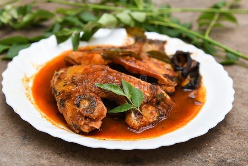 Cari chaud épicé de poissons d'Inde du Kerala images stock