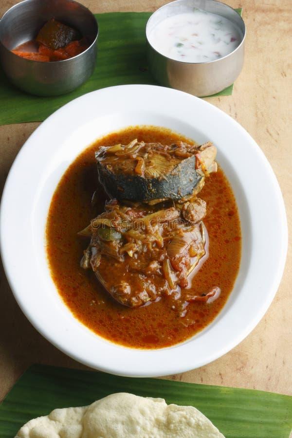Cari de poissons du Kerala images libres de droits