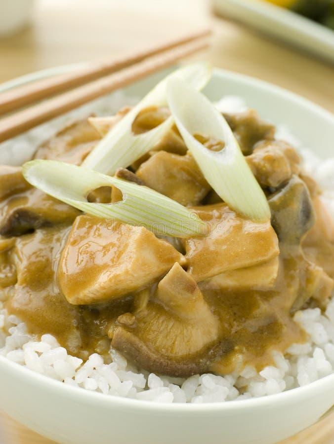Cari de poulet et de champignon de couche avec du riz de Koshihikari photographie stock